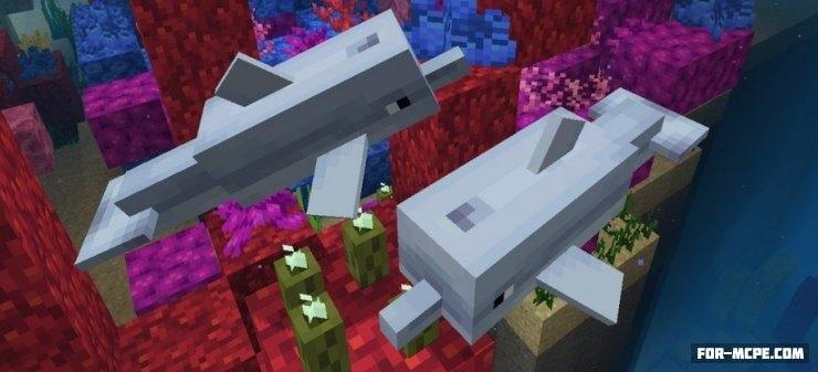 Дельфины в Minecraft PE 1.2.20.2